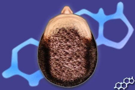 anabole steroider uten bivirkninger