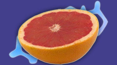 Slanke diett for overvektige – Grapefrukt Diett