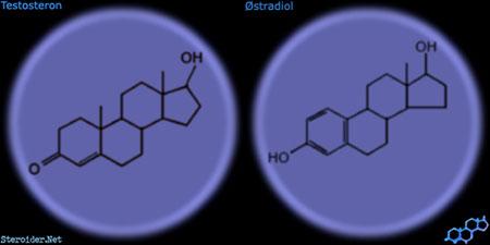 halveringstider steroider