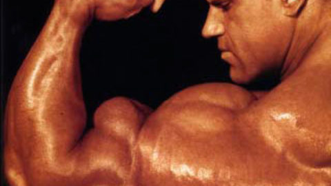 hvilke typer muskulatur har vi
